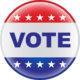 vote-icon-3